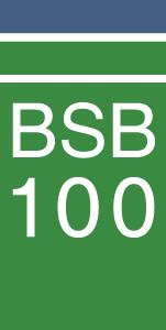 bsb100